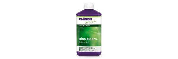 Alga (100% Bio)