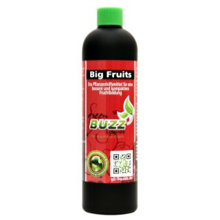 Green Buzz Liquids Big Fruits Standard 250ml