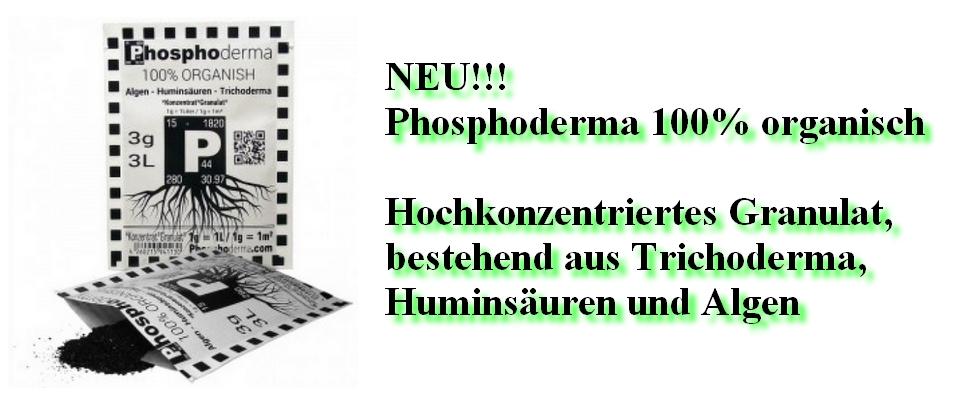 Phosphoderma 100 % organisch